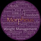 Morpheus Associates